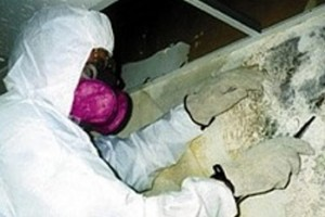 Man or woman in HAZMAT suit removing mold from interior wall.