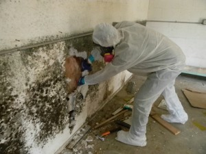 Individual in HAZMAT suit removing mold from the wall of a structure's interior